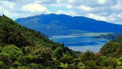 Natural Beauty in Rotorua | Lake Rotoma | Scoop.it