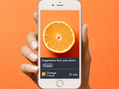 Lose It launches Snap It to let users count calories in food photos | SocialMediaRestaurants.com | Scoop.it