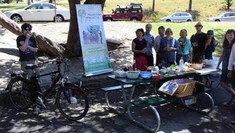 Sustainable streets - Newcastle Herald   Landcare   Scoop.it
