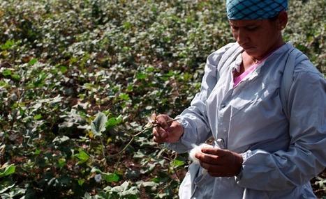 Droit du travail, Responsabilité Sociale et Ressources Humaines | ISR, DD et Responsabilité Sociétale des Entreprises | Scoop.it