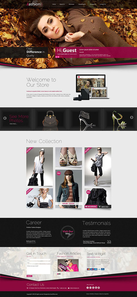 10+ Best Fashion WordPress Themes 2014 - aThemes | 4Entrepreneurs | Scoop.it