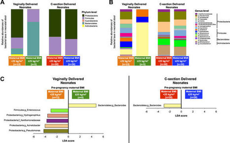 Birth mode-dependent association between pre-pregnancy maternal weight status and the neonatal intestinal microbiome   Bioinformatics and holobiota   Scoop.it