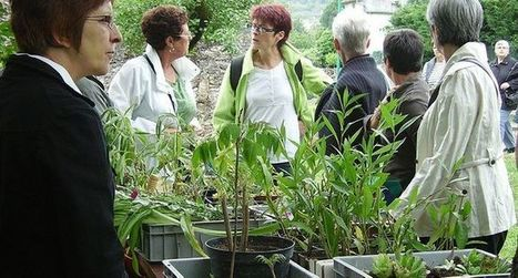 Troc de plantes et immersion  dans la verdure urbaine | (Culture)s (Urbaine)s | Scoop.it