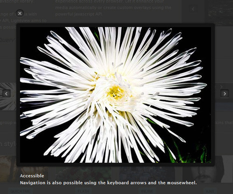 Lightview - The jQuery Lightbox | carousel | Scoop.it