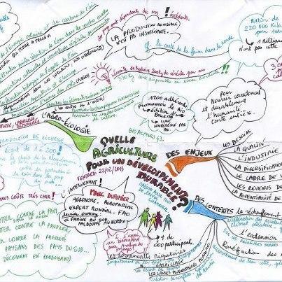 L'Agro écologie en carte ! | cartes heuristiques et créativité | Scoop.it