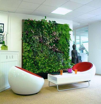 Quel est l'intérêt d'un mur végétal intérieur ? - Futura Sciences   innovation jardin   Scoop.it