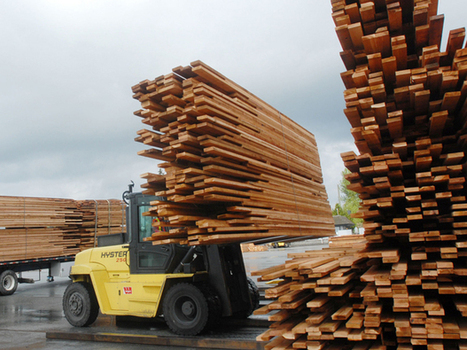 Land ruling could impact lumber market as much as pine beetle | Timberland Investment | Scoop.it