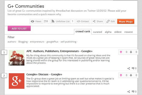 Never Less Than Success: What's Your Favorite Google+ Community? | The Google+ Project | Scoop.it