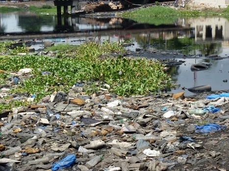 Pollution de la lagune à Anoumambo, une menace pour les riverains | Toxique, soyons vigilant ! | Scoop.it