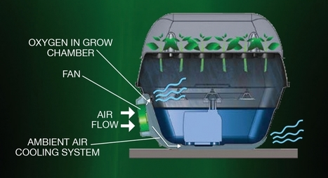 Aeroponic Turbo Klone T24 | Hydroponic Xpress | Scoop.it
