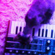 SynthCats | Cats and Music | Scoop.it