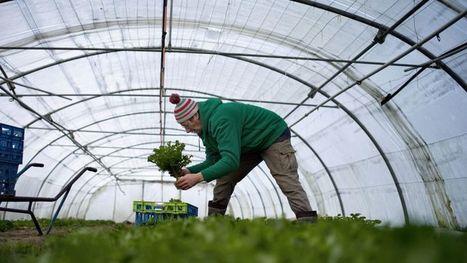 Agriculture, BTP et tourisme, grands perdants de la météo - Le Figaro | Tourisme | Scoop.it
