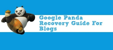 Google Panda Recovery Guide For Blogs | Seo Tips To Improve Your SEO | Scoop.it