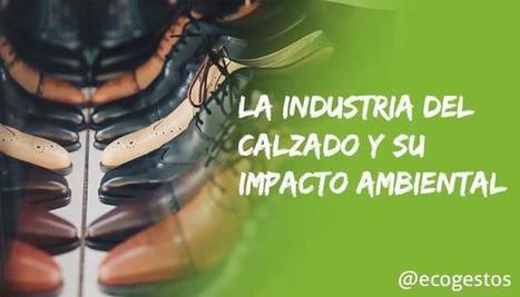 La industria del calzado y su impacto ambiental • Ecogestos | Educacion, ecologia y TIC | Scoop.it