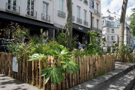 A Paris, le PERMIS de végétaliser renforce l'initiative de végétalisation par les citoyens - Construction21   URBANmedias   Scoop.it