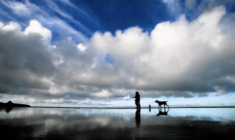 California drought: No rain, but 'the sky is not falling' | Conformable Contacts | Scoop.it