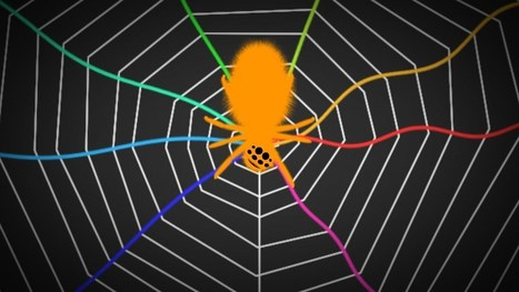 Spiders Tune and Pluck Webs Like a Musical Instrument to Locate ... | music acoustics | Scoop.it