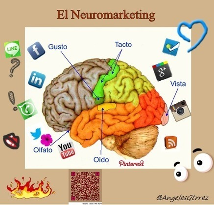 El poder del Neuromarketing en el Social Media | Redes sociales en el periodismo | Scoop.it