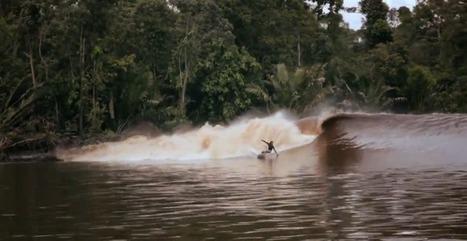 Barrels & Backwash Surfing the World's Greatest Tidal Bore [27:58] | Surfing World | Scoop.it