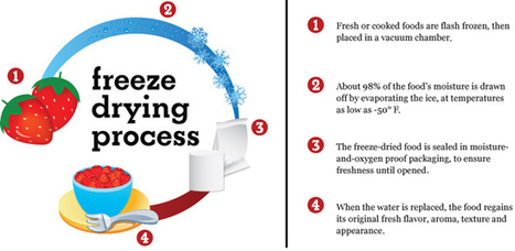 Learn How & Why Freeze Dried Food from Food Insurance | Food  Insurance | Scoop.it
