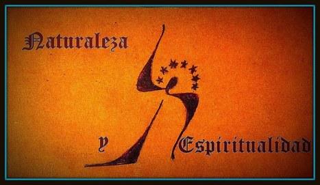 Demostrada la existencia de la inteligencia colectiva - Naturaleza y ... | INTELIGENCIA EN LA NATURALEZA | Scoop.it