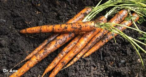 Why You Should Eat Dirt - Yes, Dirt! | SELF HEALTH | Scoop.it