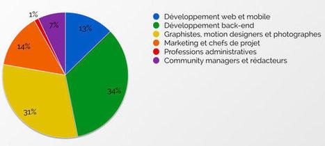 Les tarifs des développeurs freelance au deuxième trimestre 2015 - JDN | Portage Salarial | Scoop.it