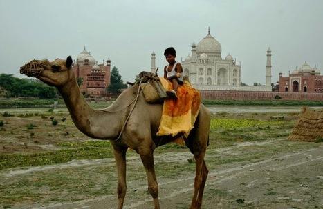 Enjoy the Wonderful India Adventure | Finding best travel deals online | Scoop.it