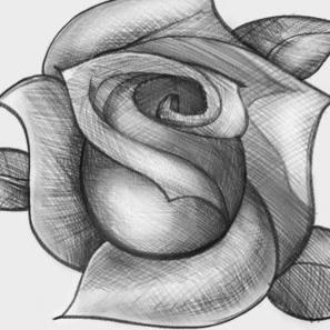 how to draw a rose in paint