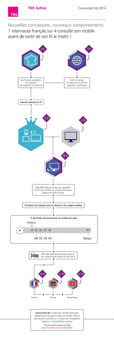 Infographie du jour : les internautes français   LeCoinCM   Scoop.it