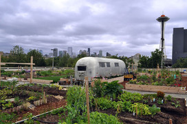 Community Thrives Along With a Garage-Top Garden | urban pioneers | Scoop.it