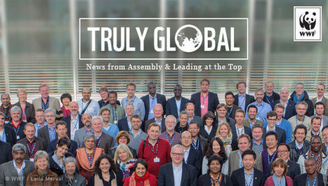 Truly Global News: What does Truly Global mean for you? | WWF news | Scoop.it