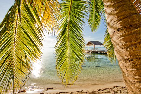 South Water Caye, Belize | What Surrounds You | Scoop.it