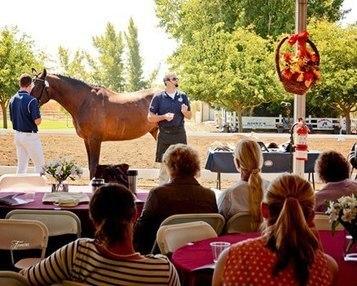 USA Equestrian Trust Opens 2015 Grants for Equine Nonprofits | USA Equestrian Trust | Scoop.it