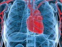 RSD/CRPS Can Involve Internal Organs - Reflex Sympathetic Dystrophy Info Center | Info on CRPS or RSD | Scoop.it