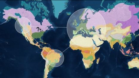 Geography Awareness Week | Rhode Island Geography Education Alliance | Scoop.it
