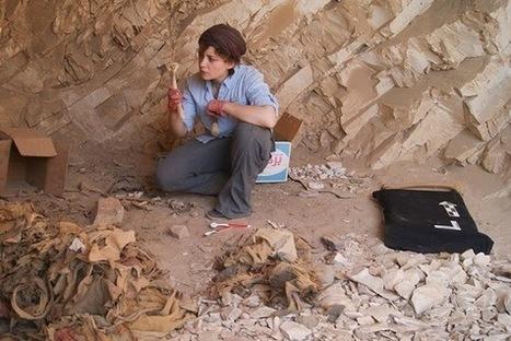 Les Découvertes Archéologiques: Les anciens travailleurs égyptiens bénéficiaient d'une protection santé | Merveilles - Marvels | Scoop.it