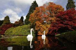 Notícias ao Minuto - Singapura quer Jardins Botânicos como património mundial da UNESCO | Património | Scoop.it