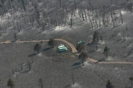 Wildfires threaten thousands of homes in Southern California | Sustain Our Earth | Scoop.it