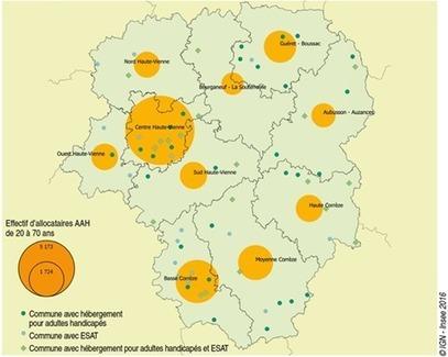 Insee - Revenus-Salaires - L'AAH en Limousin : un soutien majeur pour de nombreuses personnes en situation de handicap | Personnes Handicapées emploi-formation | Scoop.it