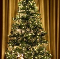 The Tradition of Christmas Trees - Christmas Gifts   Christmas at home   Scoop.it