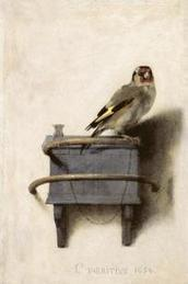 The Goldfinch: The Most Popular Bird in Manhattan | Cris Val's Favorite Art Topics | Scoop.it