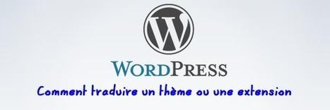Comment Traduire un Thème ou Une Extension pour WordPress   Blogs, CMS, réseaux sociaux et compagnie   Scoop.it