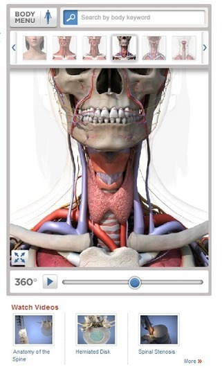 Free Technology for Teachers: Healthline Body Maps - A Good Resource for Anatomy Lessons | Curriculum Articles | Scoop.it