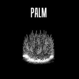 Top 10 reasons to listen Palm, in cars or elsewhere | True Information about Web Development | Scoop.it