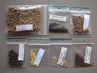 Plant- en zadenruil initiatief ... - TRANSITION TOWNS PARKSJTAD | Eetbare Stad | Scoop.it