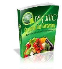 Eat Healthy With Organic Food. | omnia mea mecum fero | Scoop.it