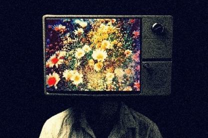 Growing Trend: Social TV | screen seriality | Scoop.it