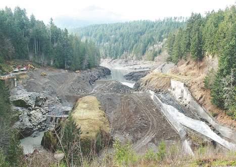 Lead-contaminated soil found at Elwha Dam site - Peninsula Daily   Fish Habitat   Scoop.it