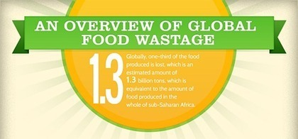 Food Waste News™ - The Latest Food Waste News, Blogs & Videos   Permaculture: Organic Gardening, Homesteading, Bio-Remediation   Scoop.it